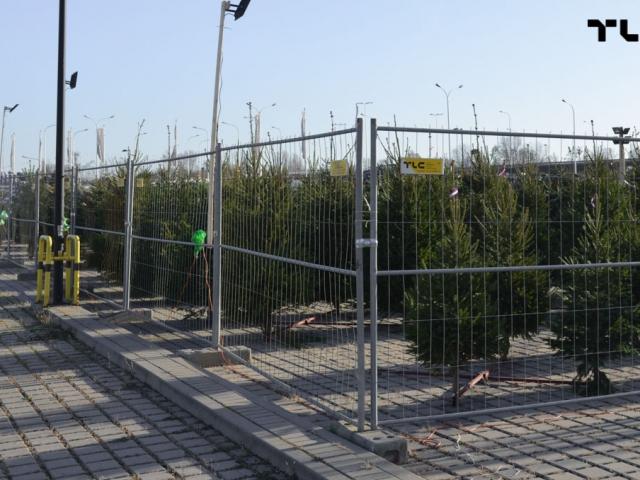 ogrodzenia-azurowe-wynajem-mobilt-choinki-www-8