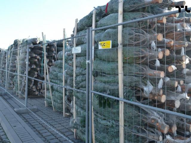 ogrodzenia-azurowe-wynajem-mobilt-choinki-www-14