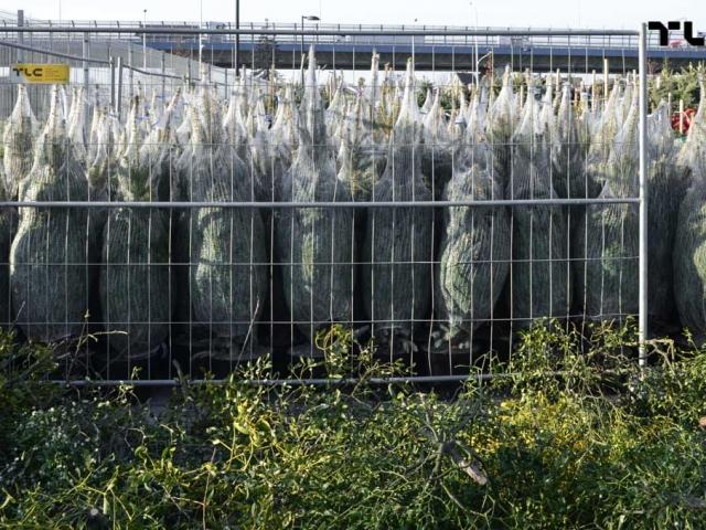 ogrodzenia-azurowe-wynajem-mobilt-choinki-www-19
